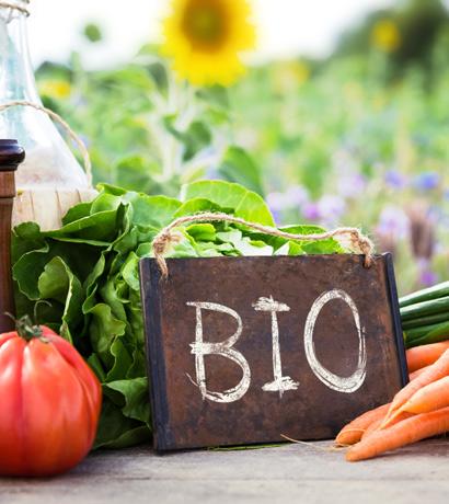 Der Boom der Bio-Produkte